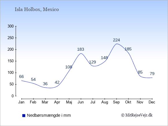 Nedbør på Isla Holbox i mm: Januar 66. Februar 54. Marts 36. April 42. Maj 108. Juni 183. Juli 129. August 148. September 224. Oktober 185. November 85. December 79.