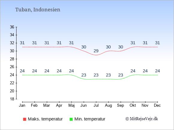 Gennemsnitlige temperaturer i Tuban -nat og dag: Januar:24,31. Februar:24,31. Marts:24,31. April:24,31. Maj:24,31. Juni:23,30. Juli:23,29. August:23,30. September:23,30. Oktober:24,31. November:24,31. December:24,31.