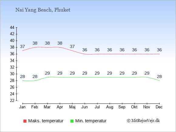 Gennemsnitlige temperaturer i Nai Yang Beach -nat og dag: Januar:28,37. Februar:28,38. Marts:29,38. April:29,38. Maj:29,37. Juni:29,36. Juli:29,36. August:29,36. September:29,36. Oktober:29,36. November:29,36. December:28,36.
