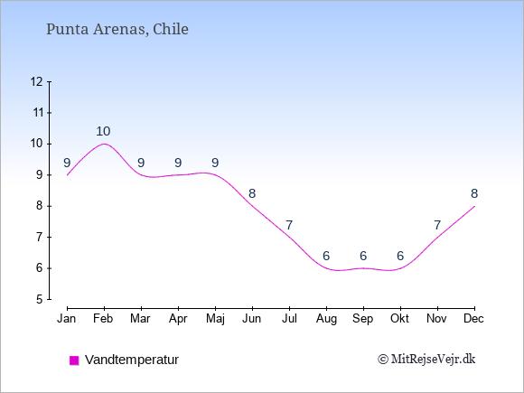 Vandtemperatur i  Punta Arenas. Badevandstemperatur: Januar:9. Februar:10. Marts:9. April:9. Maj:9. Juni:8. Juli:7. August:6. September:6. Oktober:6. November:7. December:8.