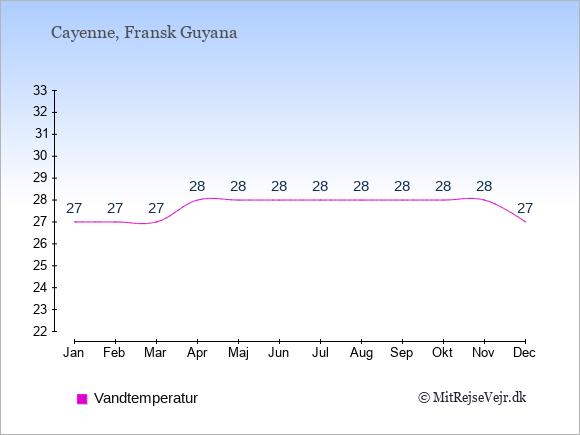Vandtemperatur i  Fransk Guyana. Badevandstemperatur.