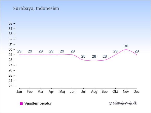 Vandtemperatur i  Surabaya. Badevandstemperatur: Januar:29. Februar:29. Marts:29. April:29. Maj:29. Juni:29. Juli:28. August:28. September:28. Oktober:29. November:30. December:29.