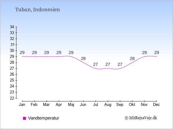 Vandtemperatur i  Tuban. Badevandstemperatur: Januar:29. Februar:29. Marts:29. April:29. Maj:29. Juni:28. Juli:27. August:27. September:27. Oktober:28. November:29. December:29.