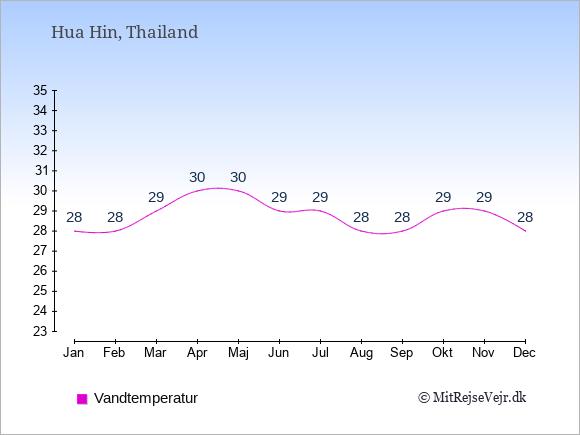 Vandtemperatur i  Hua Hin. Badevandstemperatur: Januar:28. Februar:28. Marts:29. April:30. Maj:30. Juni:29. Juli:29. August:28. September:28. Oktober:29. November:29. December:28.