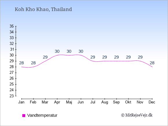 Vandtemperatur på  Koh Kho Khao. Badevandstemperatur: Januar:28. Februar:28. Marts:29. April:30. Maj:30. Juni:30. Juli:29. August:29. September:29. Oktober:29. November:29. December:28.