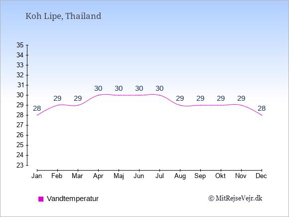 Vandtemperatur på  Koh Lipe. Badevandstemperatur: Januar:28. Februar:29. Marts:29. April:30. Maj:30. Juni:30. Juli:30. August:29. September:29. Oktober:29. November:29. December:28.