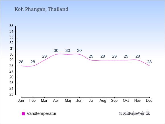 Vandtemperatur på  Koh Phangan. Badevandstemperatur: Januar:28. Februar:28. Marts:29. April:30. Maj:30. Juni:30. Juli:29. August:29. September:29. Oktober:29. November:29. December:28.