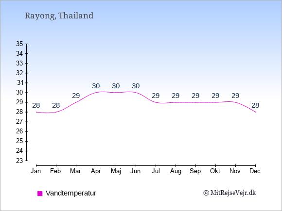 Vandtemperatur i  Rayong. Badevandstemperatur: Januar:28. Februar:28. Marts:29. April:30. Maj:30. Juni:30. Juli:29. August:29. September:29. Oktober:29. November:29. December:28.
