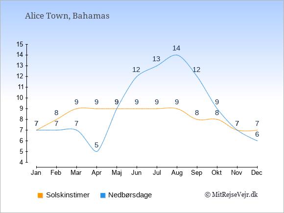 Vejret i Alice Town illustreret ved antal solskinstimer og nedbørsdage: Januar 7;7. Februar 8;7. Marts 9;7. April 9;5. Maj 9;9. Juni 9;12. Juli 9;13. August 9;14. September 8;12. Oktober 8;9. November 7;7. December 7;6.