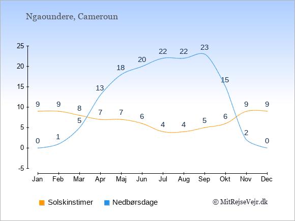 Vejret i Ngaoundere illustreret ved antal solskinstimer og nedbørsdage: Januar 9;0. Februar 9;1. Marts 8;5. April 7;13. Maj 7;18. Juni 6;20. Juli 4;22. August 4;22. September 5;23. Oktober 6;15. November 9;2. December 9;0.